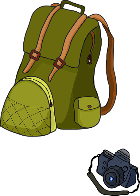 Image 2: camera backpack